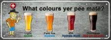 Novelty Plate – What Colours Yer Pee Mate?