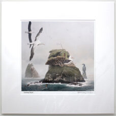 Barry Ross Smith – NZ Print – Castaway Depot