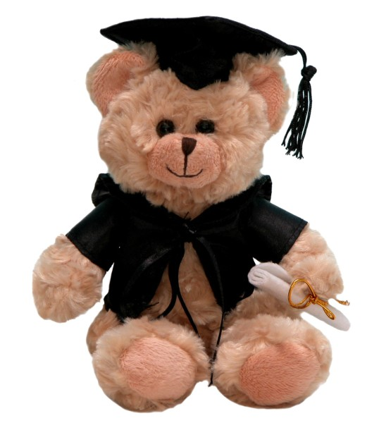 Graduation Teddy Bear (24cm)
