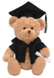 Graduation Teddy Bear (18cm)